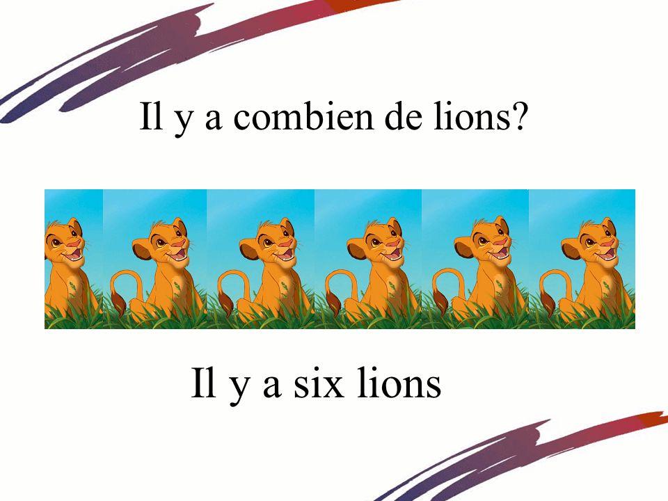 Il y a combien de lions Il y a six lions