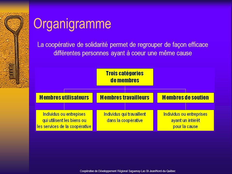 Organigramme La coopérative de solidarité permet de regrouper de façon efficace différentes personnes ayant à coeur une même cause Coopérative de Déve