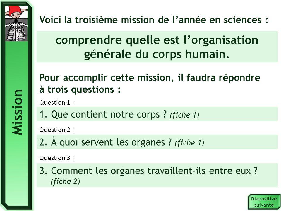 Fiche 1 - Recherche 1 Diapositive suivante Observer les organes du corps humain