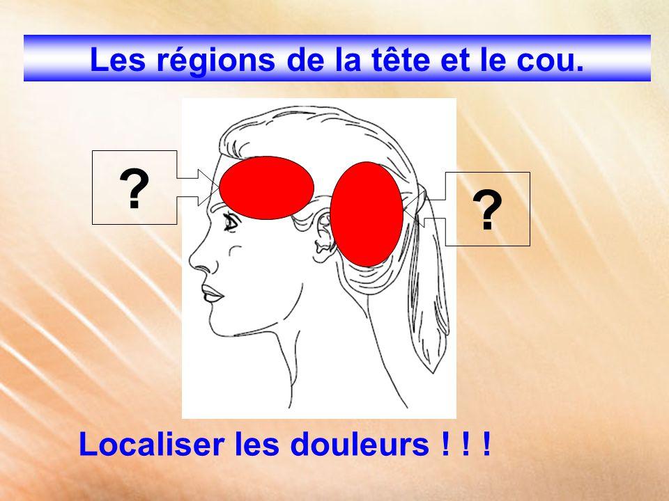 Les régions de la tête et le cou. Localiser les douleurs ! ! ! ? ?