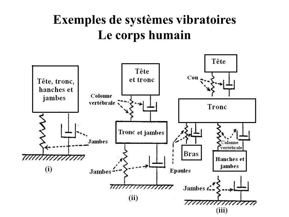 Exemples de systèmes vibratoires Le corps humain