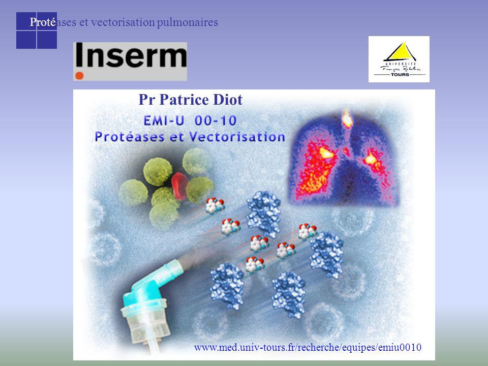 Protéases et vectorisation pulmonaires www.med.univ-tours.fr/recherche/equipes/emiu0010 Pr Patrice Diot