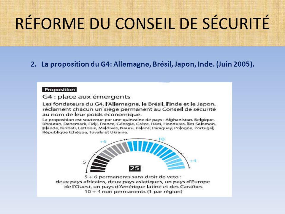  Réforme des méthodes de travail: 1.Se réunir en forum public ouvert aux membres de l'ONU; 2.Réaliser les articles 31 et 32 de la Charte par consultation régulière des autres membres de l'ONU; 3.Assurer l'accès aux organes subsidiaires du Conseil à tout membre de l'ONU qui n'est pas membre du Conseil; 4.Organiser des briefings sur les questions soumises aux organes du Conseil pour les autres membres de l'ONU; 5.Organiser des consultations régulières avec les principaux pays contributeurs aux finances, aux forces de maintien de la paix et qui sont impliqués dans les opérations de maintien de la paix; 6.Organiser des consultations avec le Président de l'A.G et le Conseil économique et social.