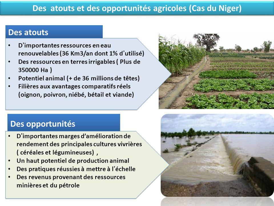 Des atouts et des opportunités agricoles (Cas du Niger) Des atouts D'importantes ressources en eau renouvelables (36 Km3/an dont 1% d'utilisé) Des res
