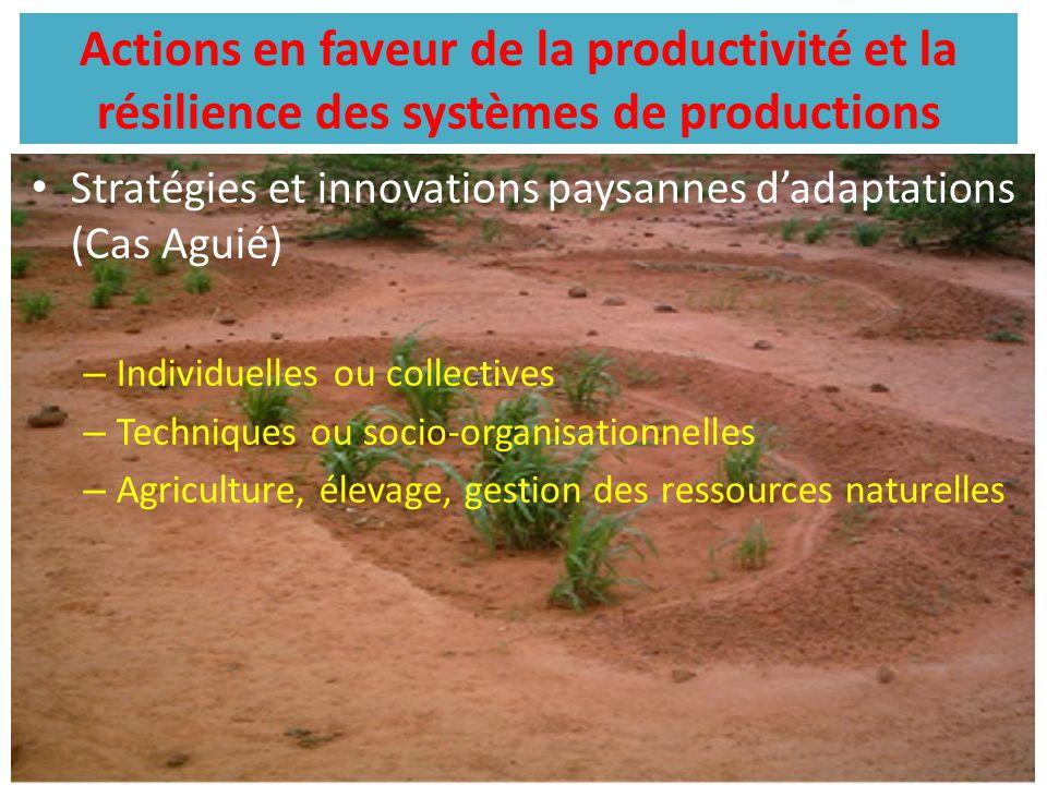 Actions en faveur de la productivité et la résilience des systèmes de productions Stratégies et innovations paysannes d'adaptations (Cas Aguié) – Indi
