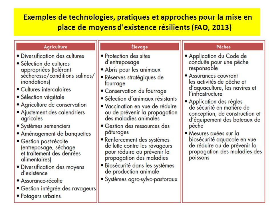 Exemples de technologies, pratiques et approches pour la mise en place de moyens d'existence résilients (FAO, 2013)