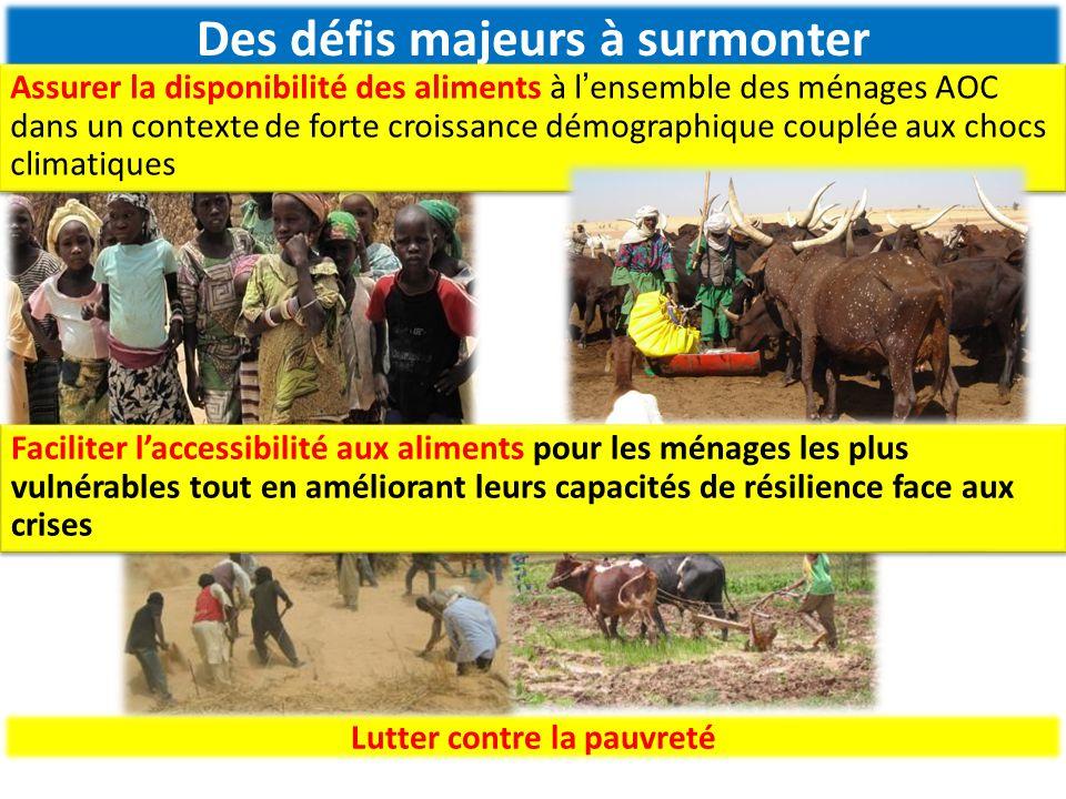 PIP 6 : gestion durable des terres et de la biodiversité PIP 7 : valorisation des produits forestiers ligneux et non ligneux PIP 8 : Transformation et commercialisation des produits PIP 9 : Amélioration de la résilience des populations face aux crises alimentaires et catastrophes PIP 10 : amélioration de l'état nutritionnel des nigériens PIP11 : Renforcement des capacités pour la mise en œuvre de l'i3n