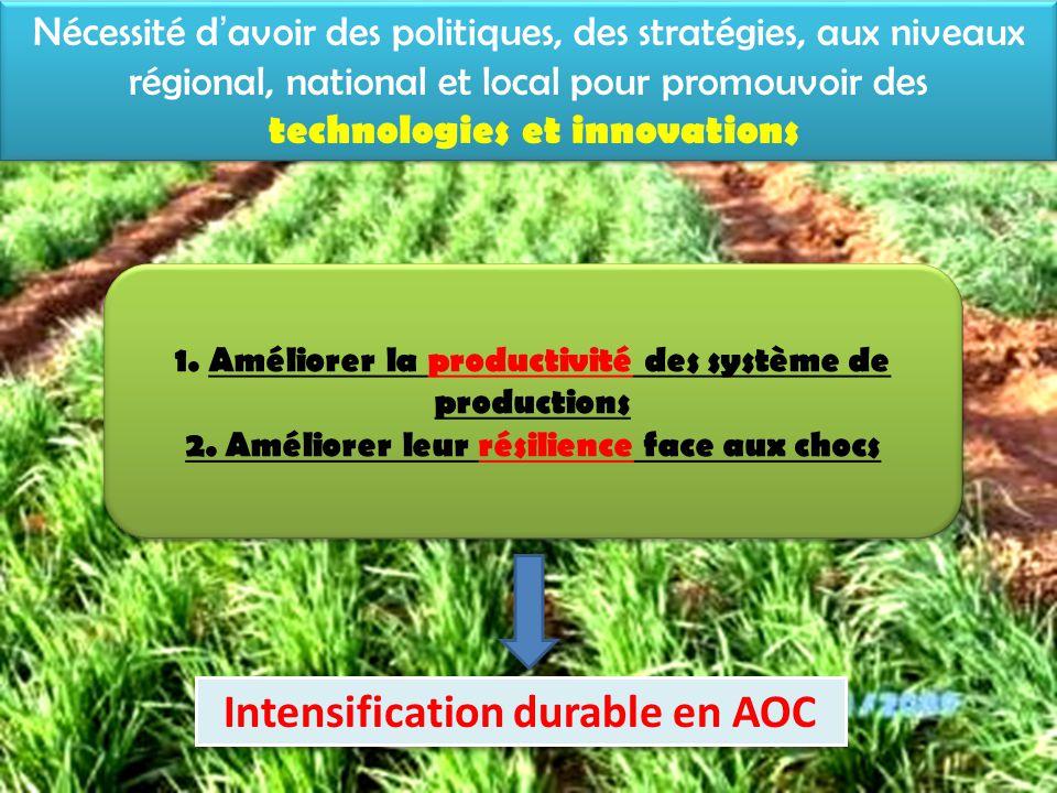 Actions en faveur de la productivité et la résilience des systèmes de productions Stratégies et innovations paysannes d'adaptations (Cas Aguié) – Individuelles ou collectives – Techniques ou socio-organisationnelles – Agriculture, élevage, gestion des ressources naturelles