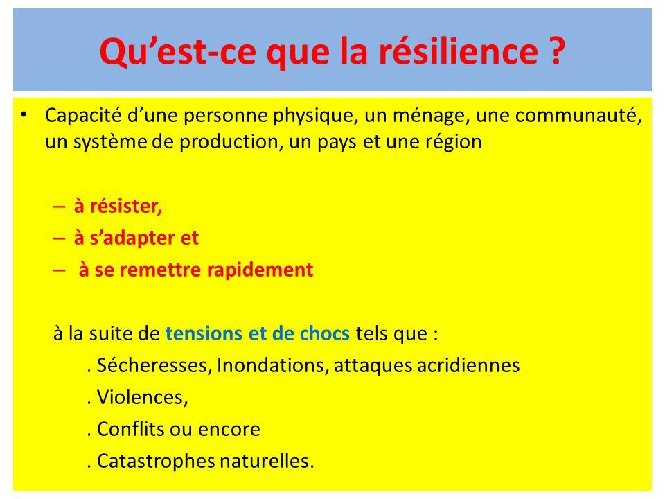 Qu'est-ce que la résilience ? Capacité d'une personne physique, un ménage, une communauté, un système de production, un pays et une région – à résiste