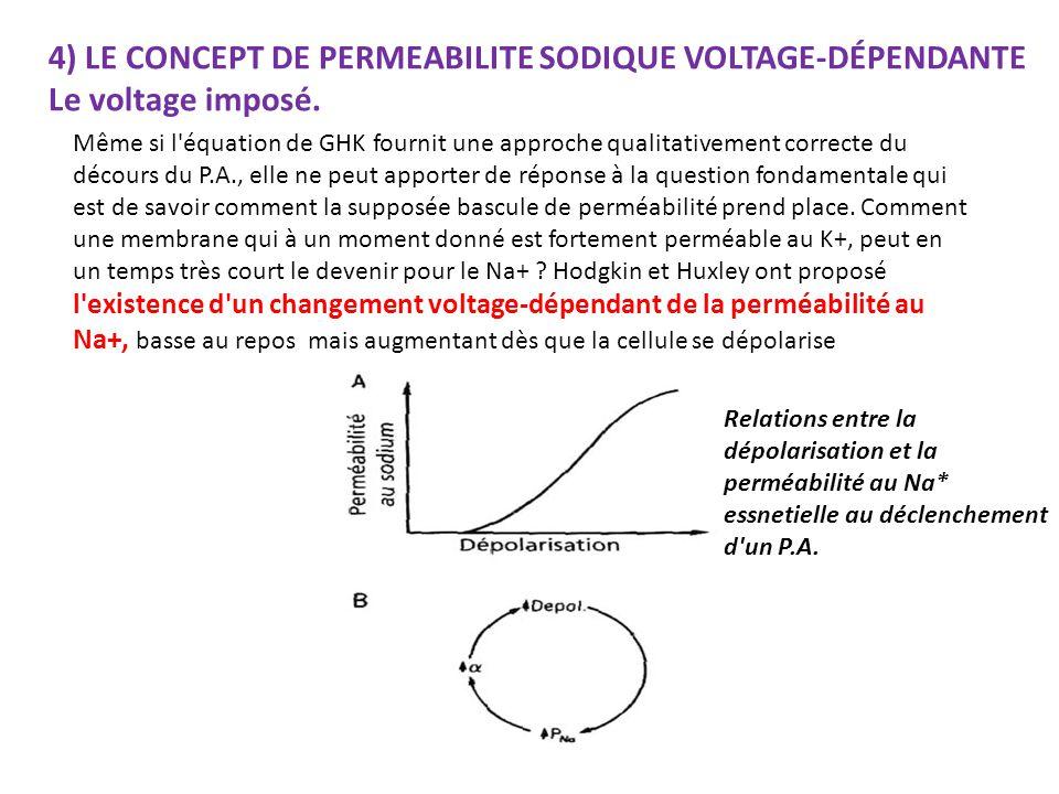 4) LE CONCEPT DE PERMEABILITE SODIQUE VOLTAGE-DÉPENDANTE Le voltage imposé.