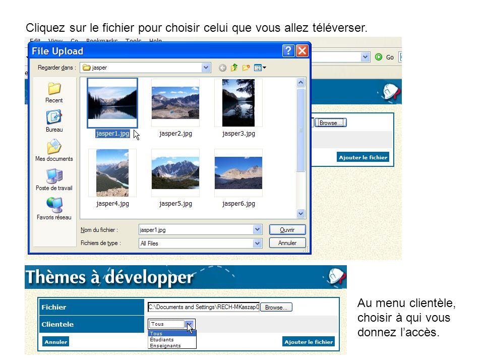Cliquez sur le fichier pour choisir celui que vous allez téléverser. Au menu clientèle, choisir à qui vous donnez l'accès.