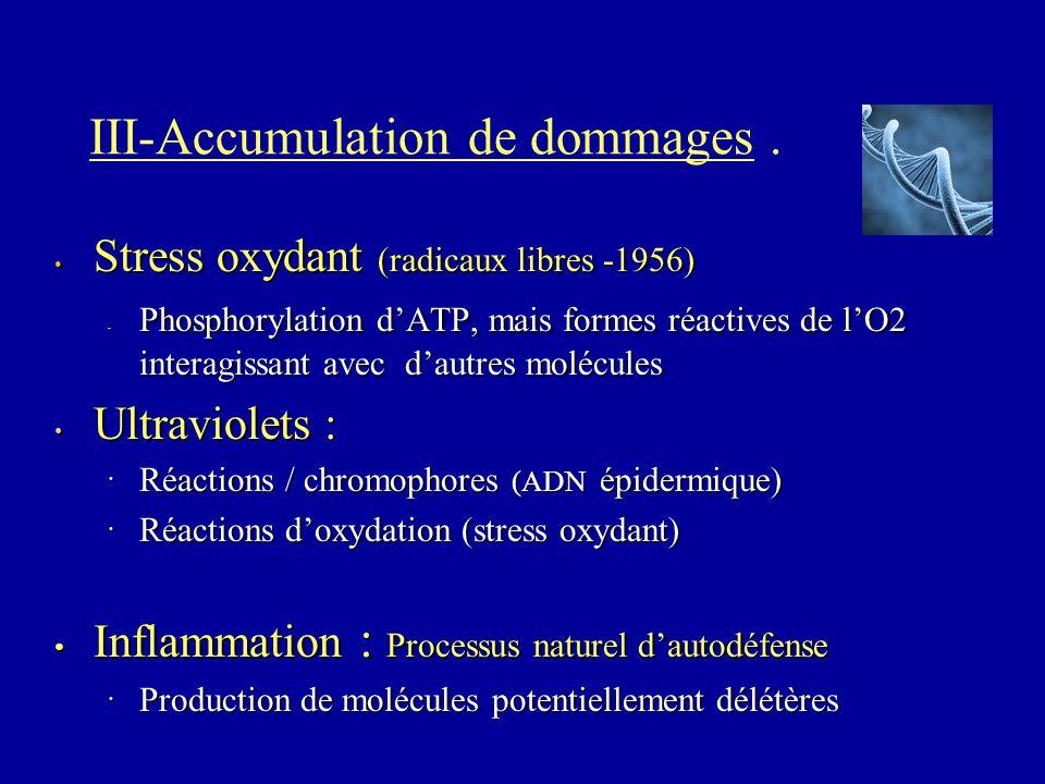 III-Accumulation de dommages. Stress oxydant (radicaux libres -1956) Stress oxydant (radicaux libres -1956) Phosphorylation d'ATP, mais formes réactiv