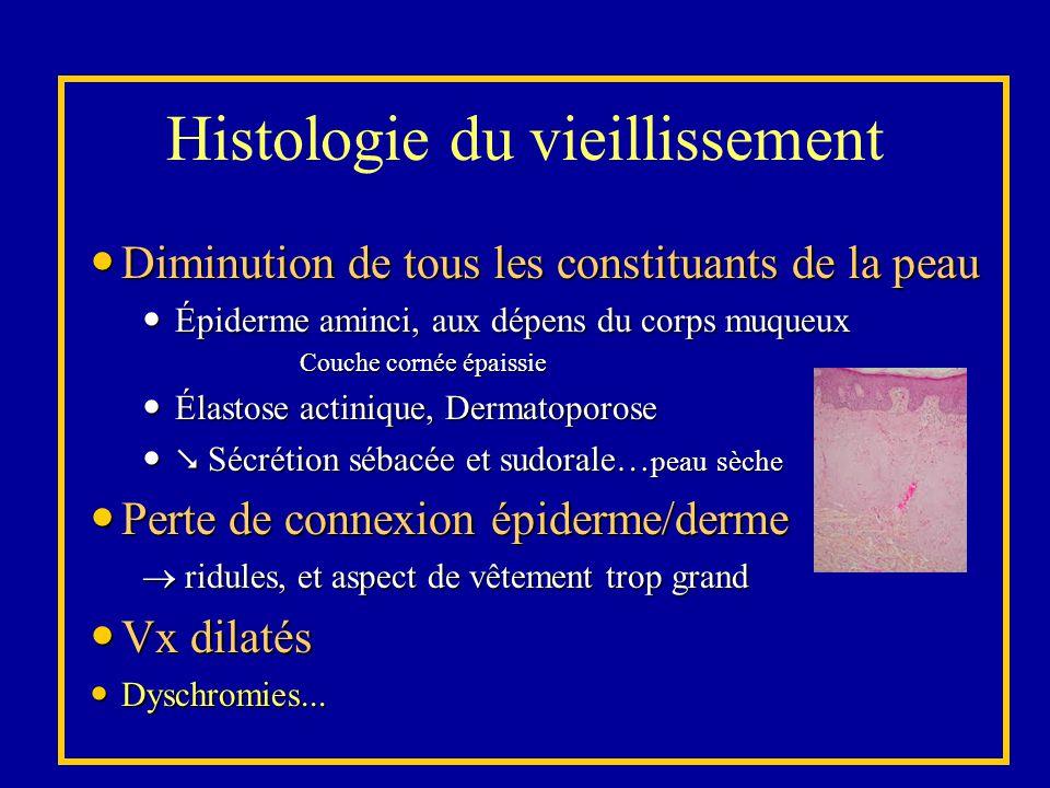 Histologie du vieillissement Diminution de tous les constituants de la peau Diminution de tous les constituants de la peau Épiderme aminci, aux dépens