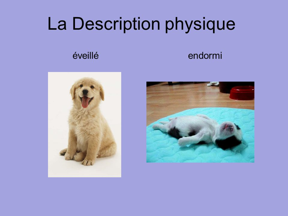 La Description physique éveillé endormi