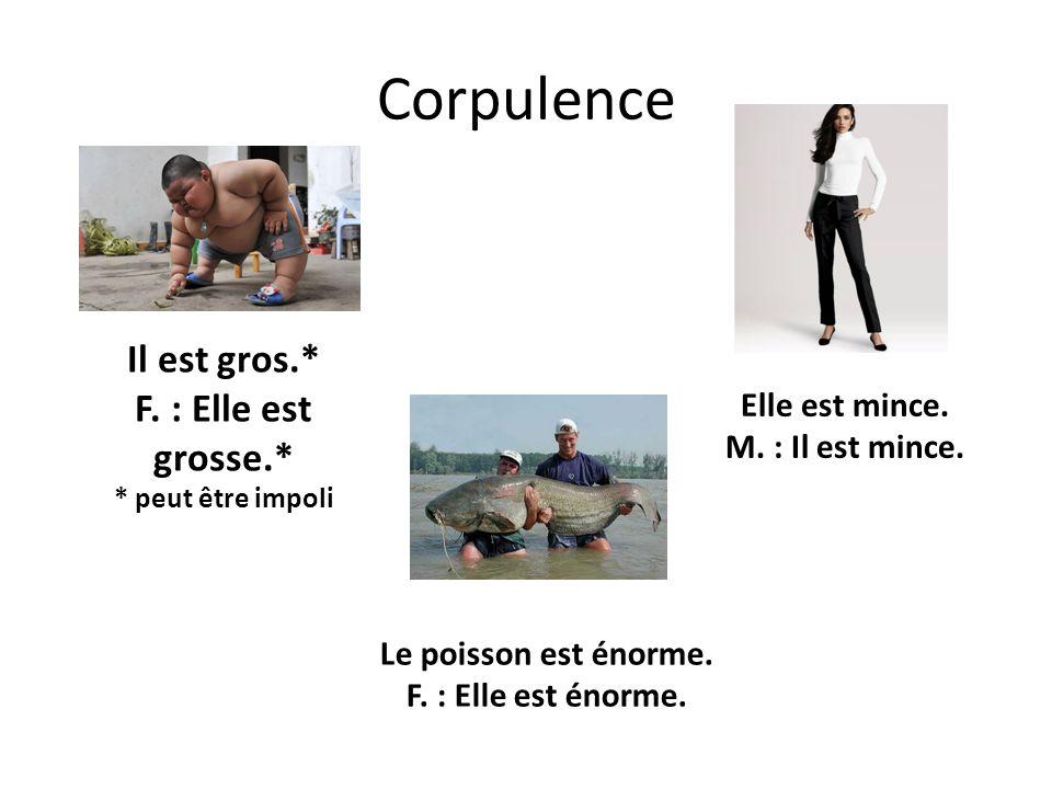 Corpulence Il est gros.* F. : Elle est grosse.* * peut être impoli Elle est mince. M. : Il est mince. Le poisson est énorme. F. : Elle est énorme.