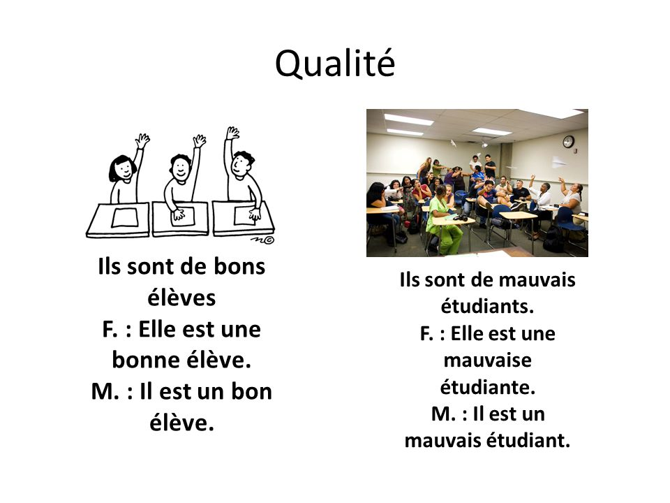Qualité Ils sont de bons élèves F. : Elle est une bonne élève. M. : Il est un bon élève. Ils sont de mauvais étudiants. F. : Elle est une mauvaise étu