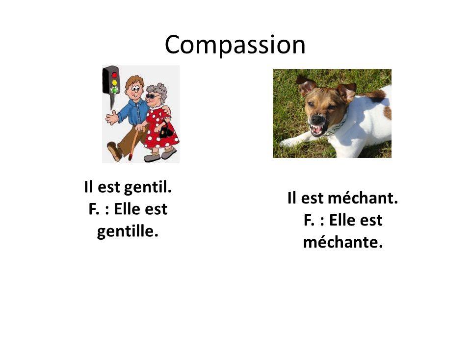 Compassion Il est gentil. F. : Elle est gentille. Il est méchant. F. : Elle est méchante.