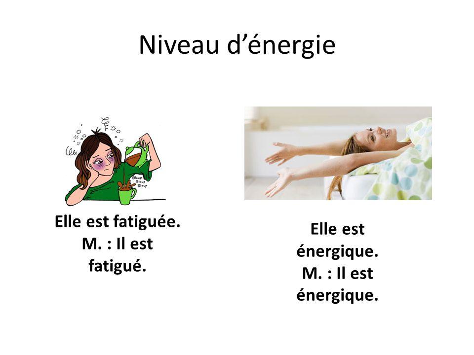 Niveau d'énergie Elle est fatiguée. M. : Il est fatigué. Elle est énergique. M. : Il est énergique.