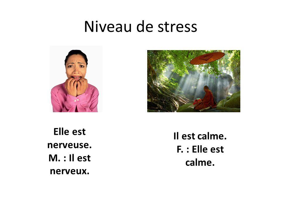 Niveau de stress Elle est nerveuse. M. : Il est nerveux. Il est calme. F. : Elle est calme.