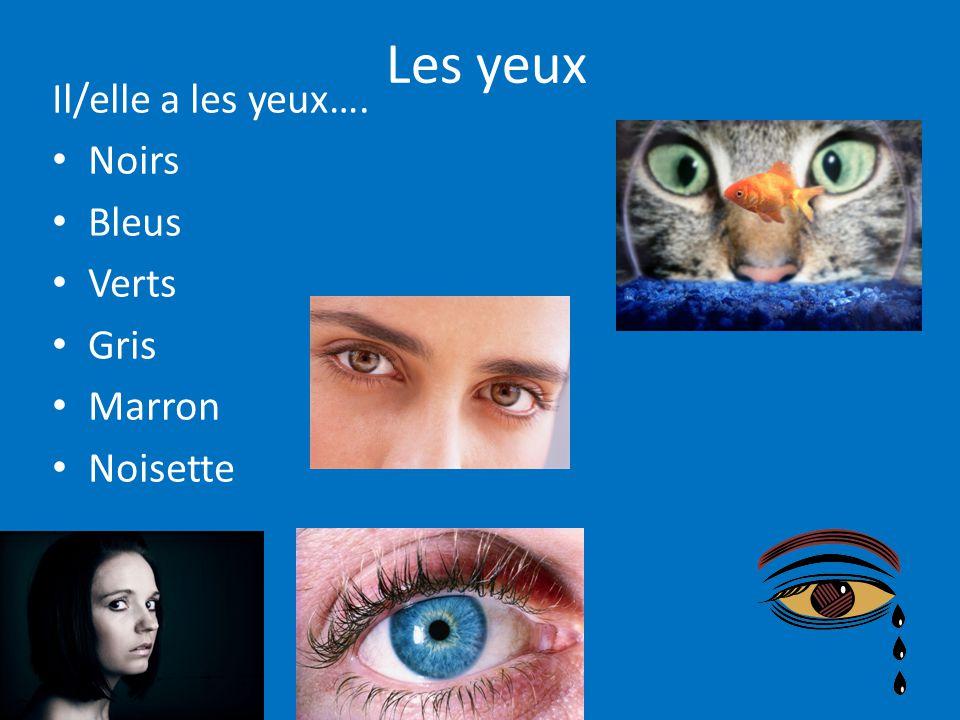 Les yeux Il/elle a les yeux…. Noirs Bleus Verts Gris Marron Noisette