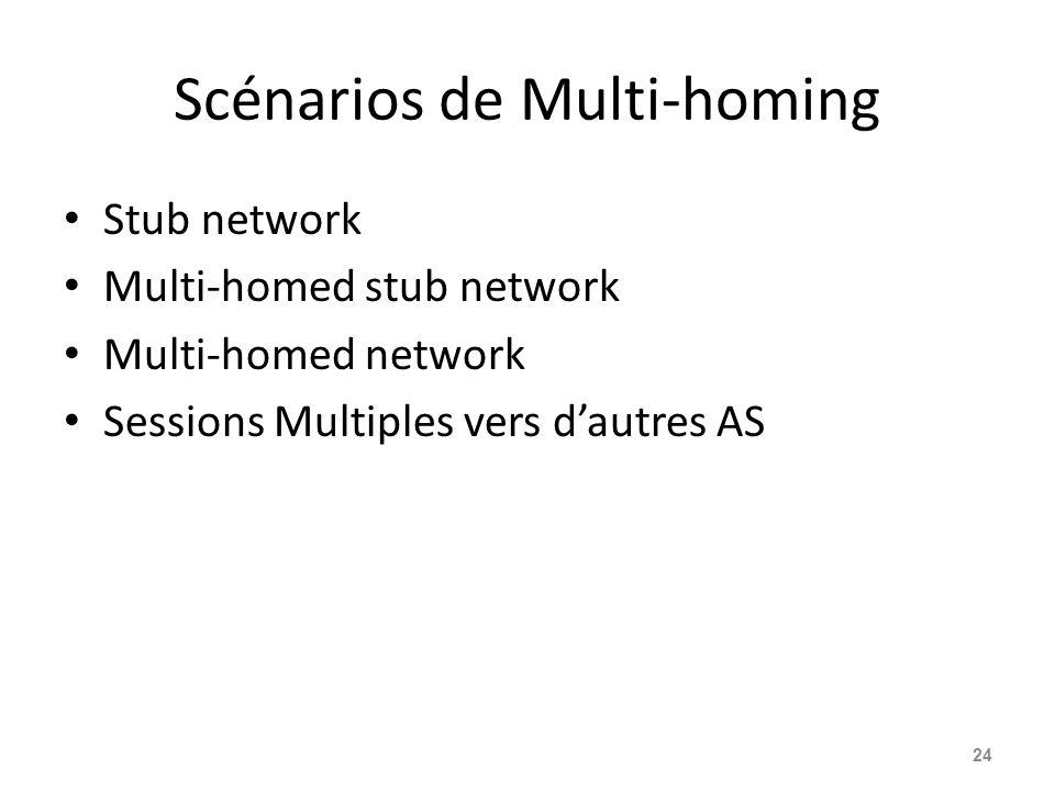 Scénarios de Multi-homing Stub network Multi-homed stub network Multi-homed network Sessions Multiples vers d'autres AS 24