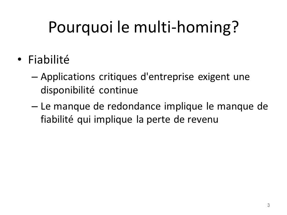 Pourquoi le multi-homing? Fiabilité – Applications critiques d'entreprise exigent une disponibilité continue – Le manque de redondance implique le man
