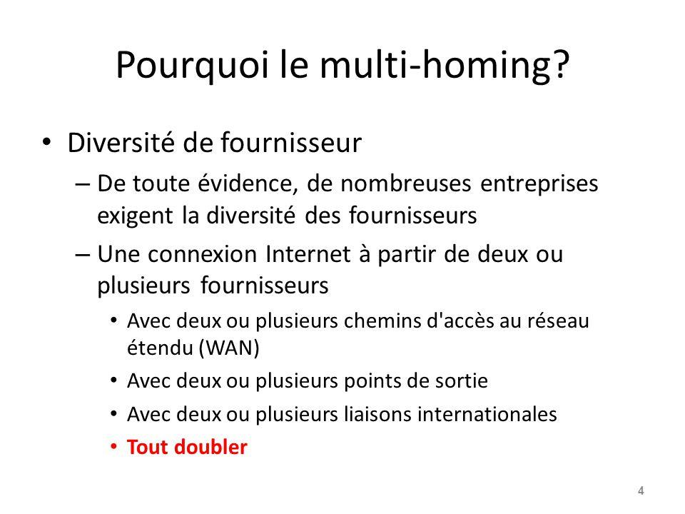 Pourquoi le multi-homing? Diversité de fournisseur – De toute évidence, de nombreuses entreprises exigent la diversité des fournisseurs – Une connexio