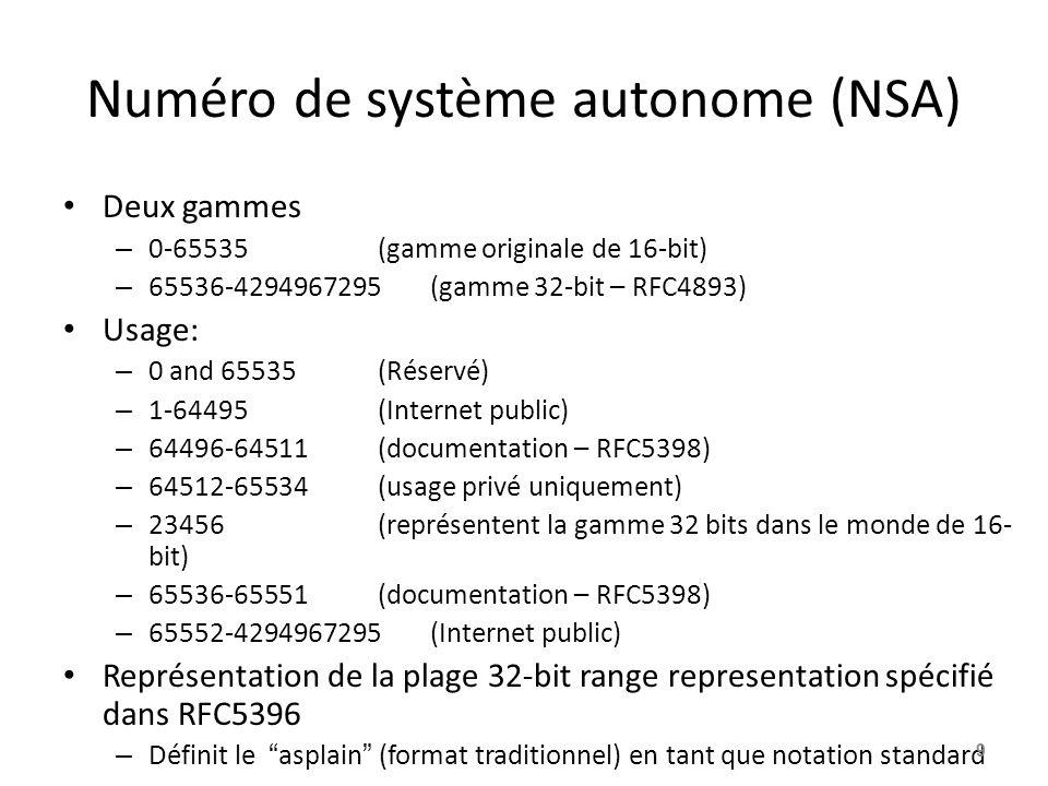 Numéro de système autonome (NSA) Deux gammes – 0-65535(gamme originale de 16-bit) – 65536-4294967295(gamme 32-bit – RFC4893) Usage: – 0 and 65535(Rése