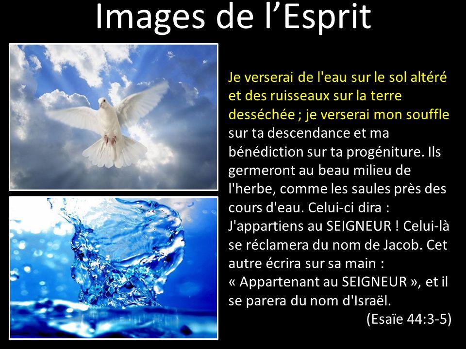 Images de l'Esprit Je verserai de l'eau sur le sol altéré et des ruisseaux sur la terre desséchée ; je verserai mon souffle sur ta descendance et ma b