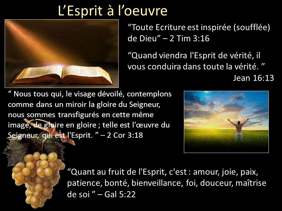 """L'Esprit à l'oeuvre """"Quand viendra l'Esprit de vérité, il vous conduira dans toute la vérité. """" Jean 16:13 """"Toute Ecriture est inspirée (soufflée) de"""
