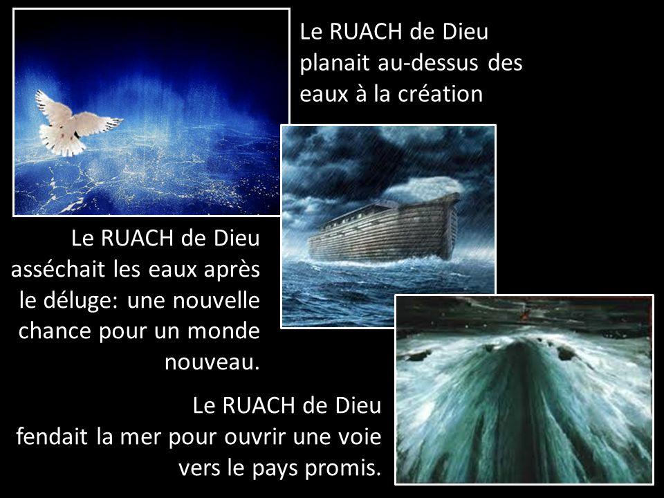 Le RUACH de Dieu planait au-dessus des eaux à la création Le RUACH de Dieu asséchait les eaux après le déluge: une nouvelle chance pour un monde nouveau.