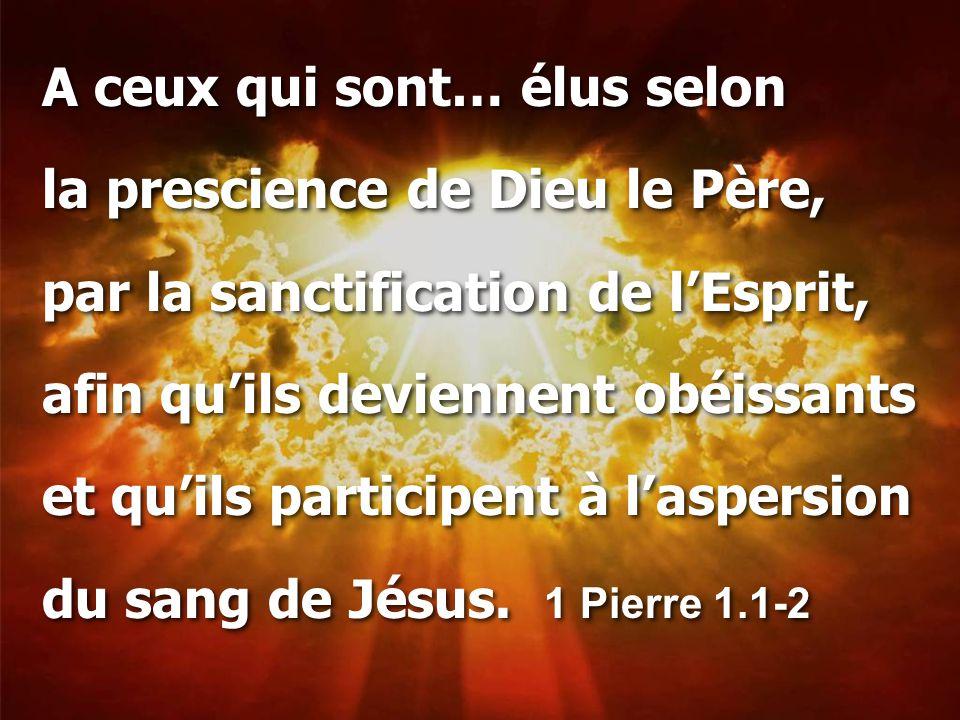 A ceux qui sont… élus selon la prescience de Dieu le Père, par la sanctification de l'Esprit, afin qu'ils deviennent obéissants et qu'ils participent à l'aspersion du sang de Jésus.