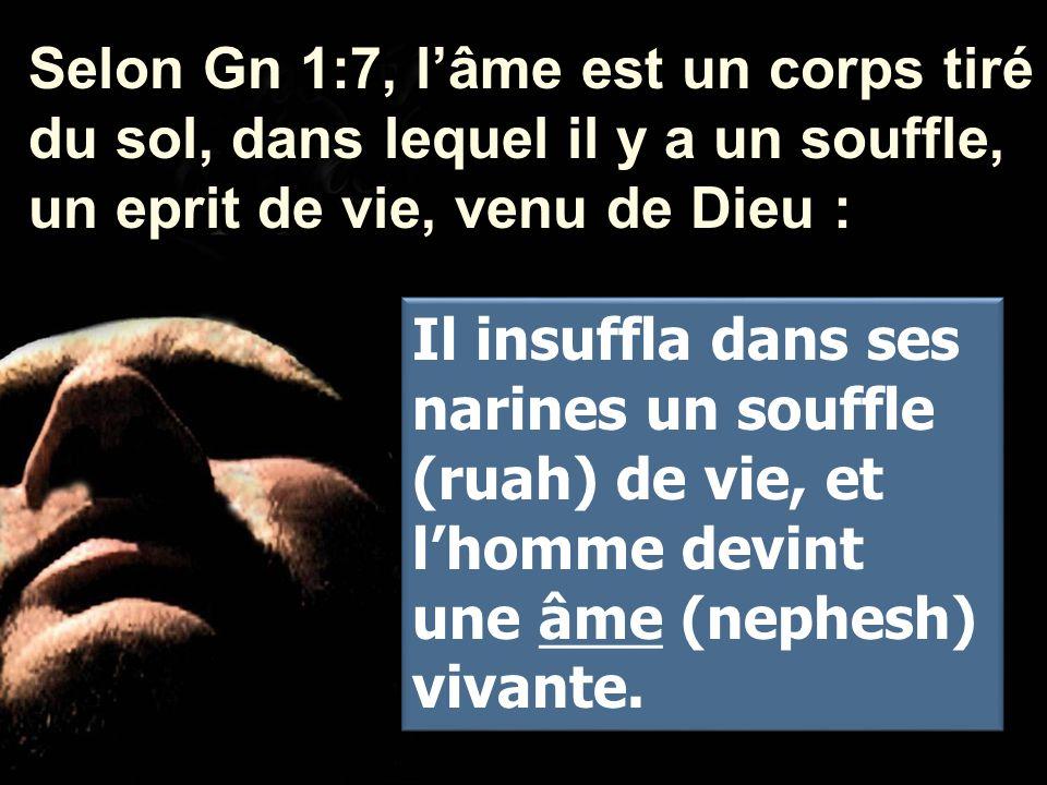 Selon Gn 1:7, l'âme est un corps tiré du sol, dans lequel il y a un souffle, un eprit de vie, venu de Dieu : Il insuffla dans ses narines un souffle (