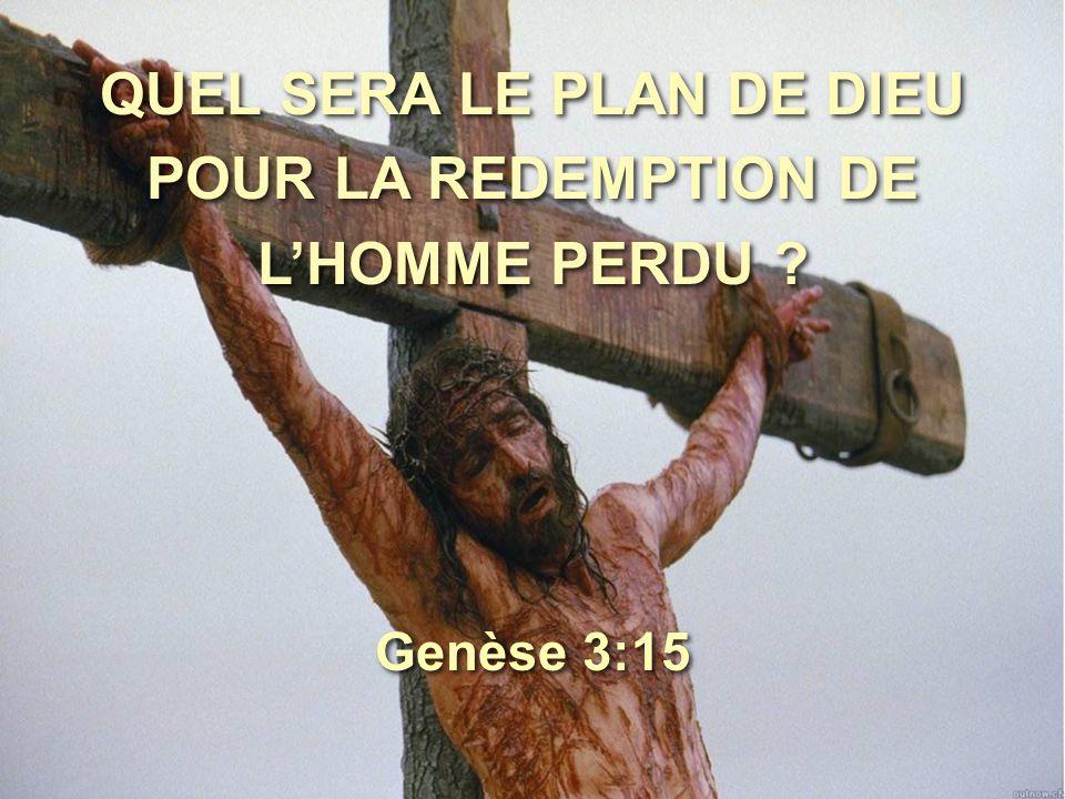 QUEL SERA LE PLAN DE DIEU POUR LA REDEMPTION DE L'HOMME PERDU ? Genèse 3:15