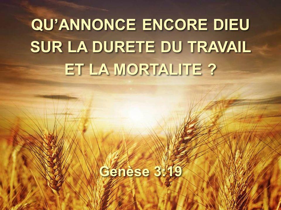 Genèse 3:19 QU'ANNONCE ENCORE DIEU SUR LA DURETE DU TRAVAIL ET LA MORTALITE ?
