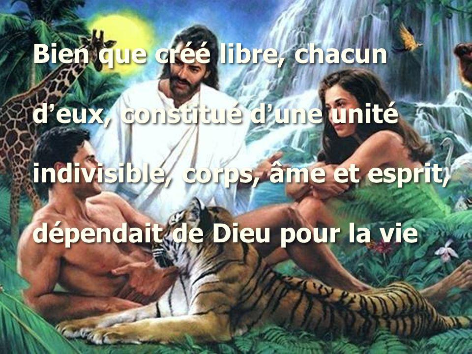 Bien que créé libre, chacun d ' eux, constitué d ' une unité indivisible, corps, âme et esprit, dépendait de Dieu pour la vie Bien que créé libre, cha