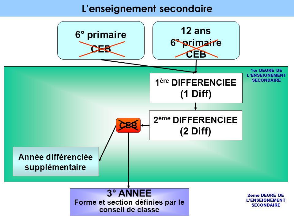 L'enseignement secondaire 12 ans 6° primaire CEB 6° primaire CEB 1er DEGRÉ DE L'ENSEIGNEMENT SECONDAIRE 1 ère DIFFERENCIEE (1 Diff) 2 ème DIFFERENCIEE (2 Diff) 3° ANNEE Forme et section définies par le conseil de classe Année différenciée supplémentaire CEB 2ème DEGRÉ DE L'ENSEIGNEMENT SECONDAIRE