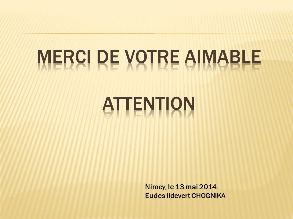 Nimey, le 13 mai 2014. Eudes Ildevert CHOGNIKA