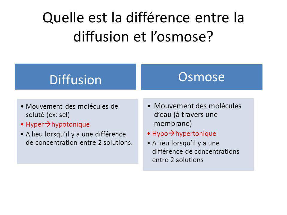Quelle est la différence entre la diffusion et l'osmose? Diffusion Mouvement des molécules de soluté (ex: sel) Hyper  hypotonique A lieu lorsqu'il y