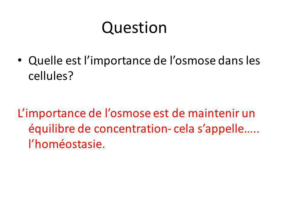 Question Quelle est l'importance de l'osmose dans les cellules? L'importance de l'osmose est de maintenir un équilibre de concentration- cela s'appell