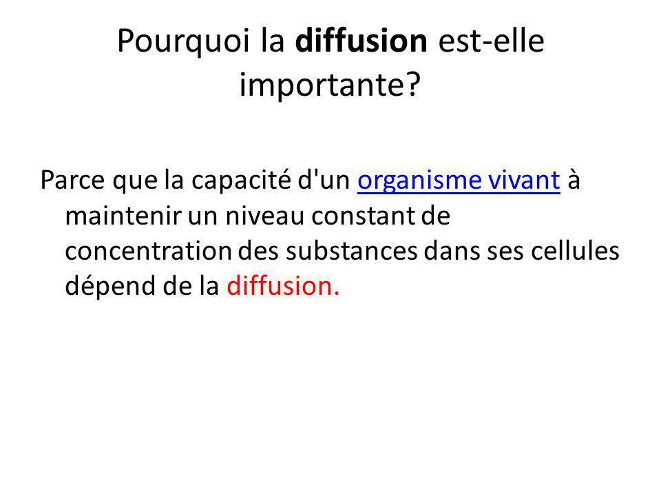 Pourquoi la diffusion est-elle importante? Parce que la capacité d'un organisme vivant à maintenir un niveau constant de concentration des substances