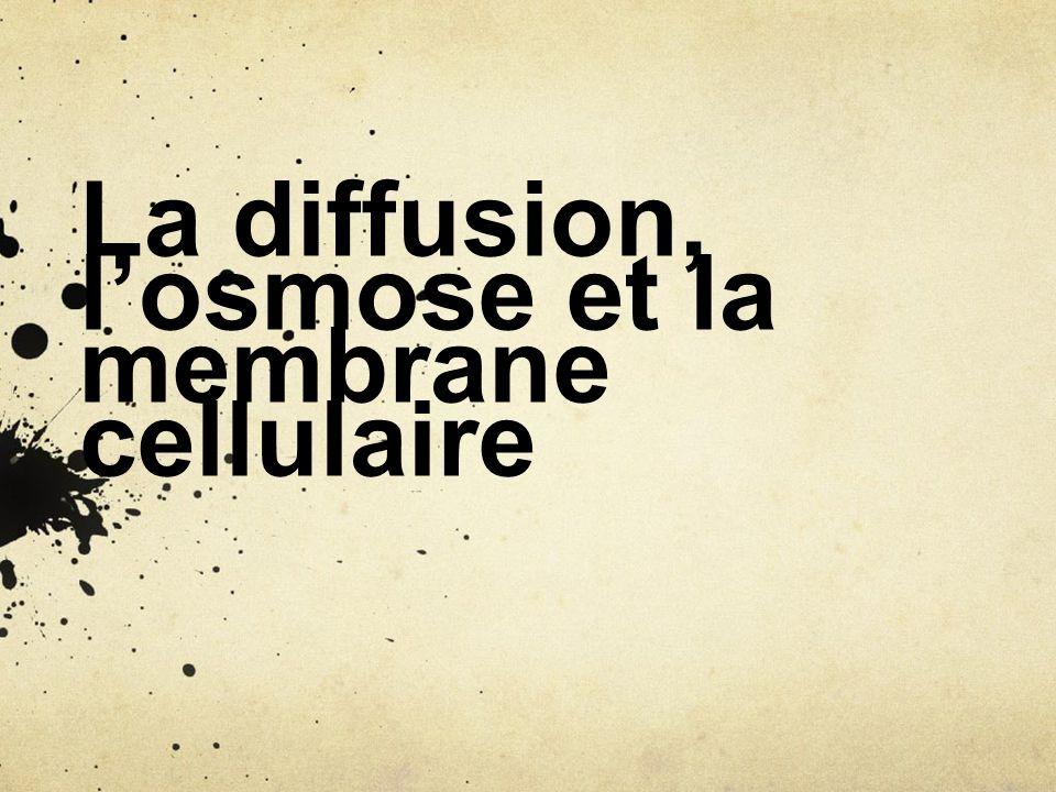 La diffusion, l'osmose et la membrane cellulaire