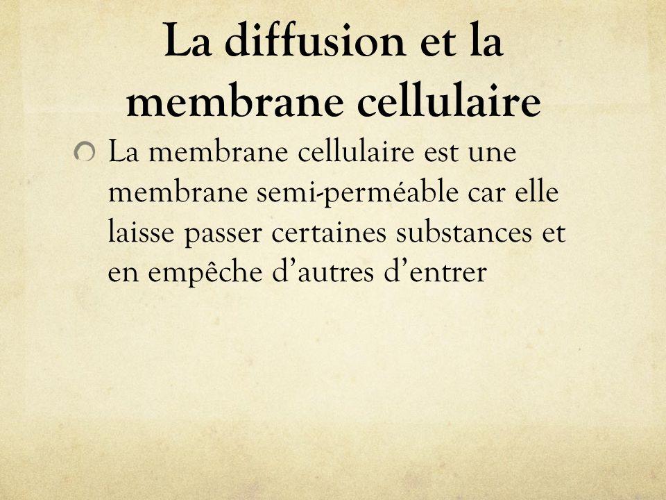 La diffusion et la membrane cellulaire La membrane cellulaire est une membrane semi-perméable car elle laisse passer certaines substances et en empêch