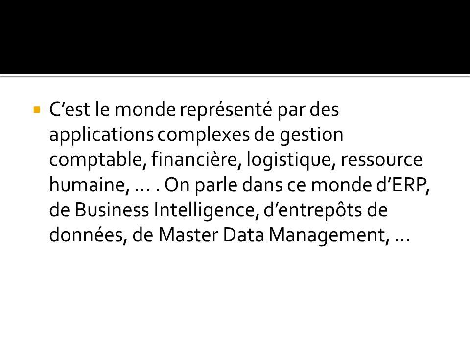 C'est le monde représenté par des applications complexes de gestion comptable, financière, logistique, ressource humaine, …. On parle dans ce monde