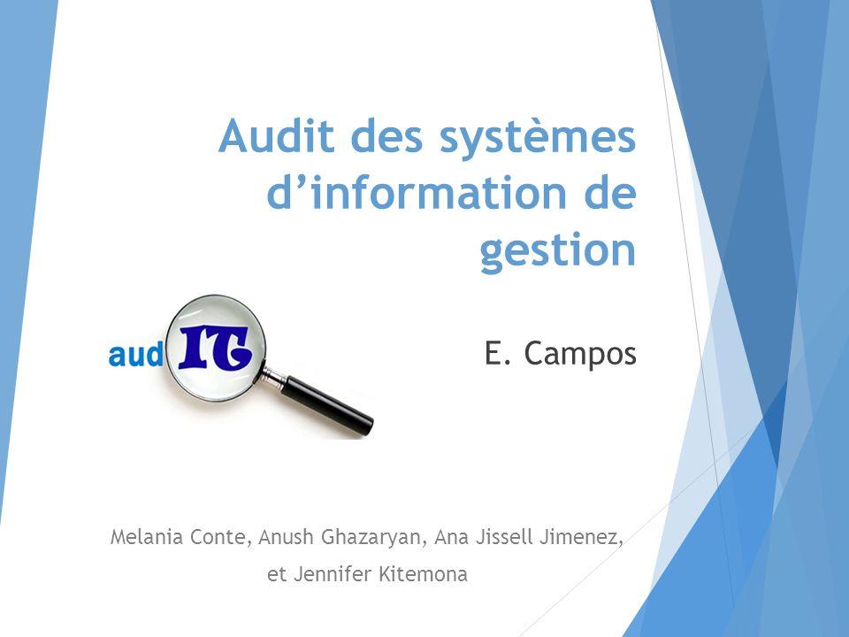 Audit des systèmes d'information de gestion E.