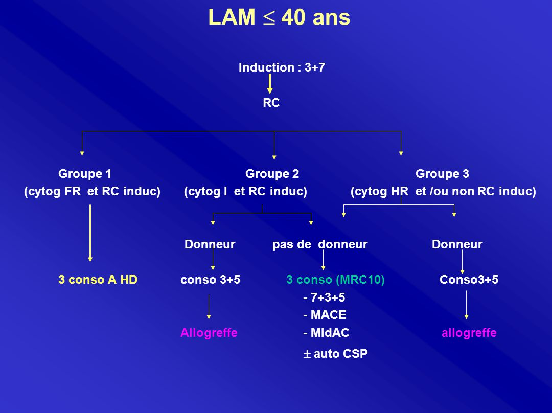 LAM  40 ans Induction : 3+7 RC Groupe 1 Groupe 2 Groupe 3 (cytog FR et RC induc) (cytog I et RC induc) (cytog HR et /ou non RC induc) Donneur pas de donneur Donneur 3 conso A HD conso 3+5 3 conso (MRC10) Conso3+5 - 7+3+5 - MACE Allogreffe - MidAC allogreffe  auto CSP