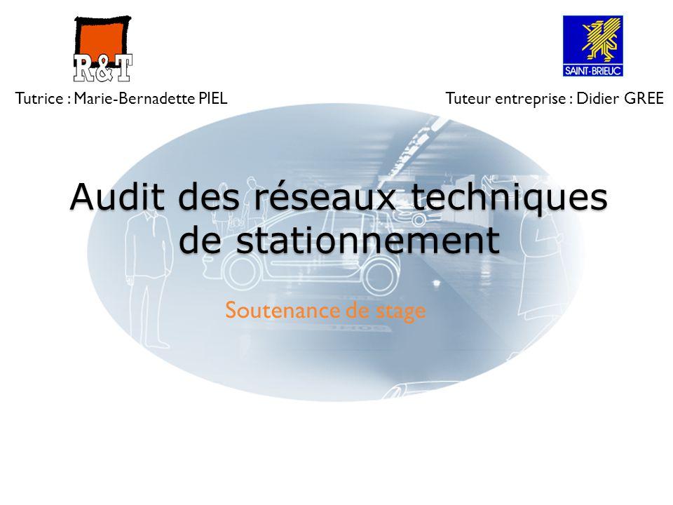 Audit des réseaux techniques de stationnement Soutenance de stage Tutrice : Marie-Bernadette PIELTuteur entreprise : Didier GREE