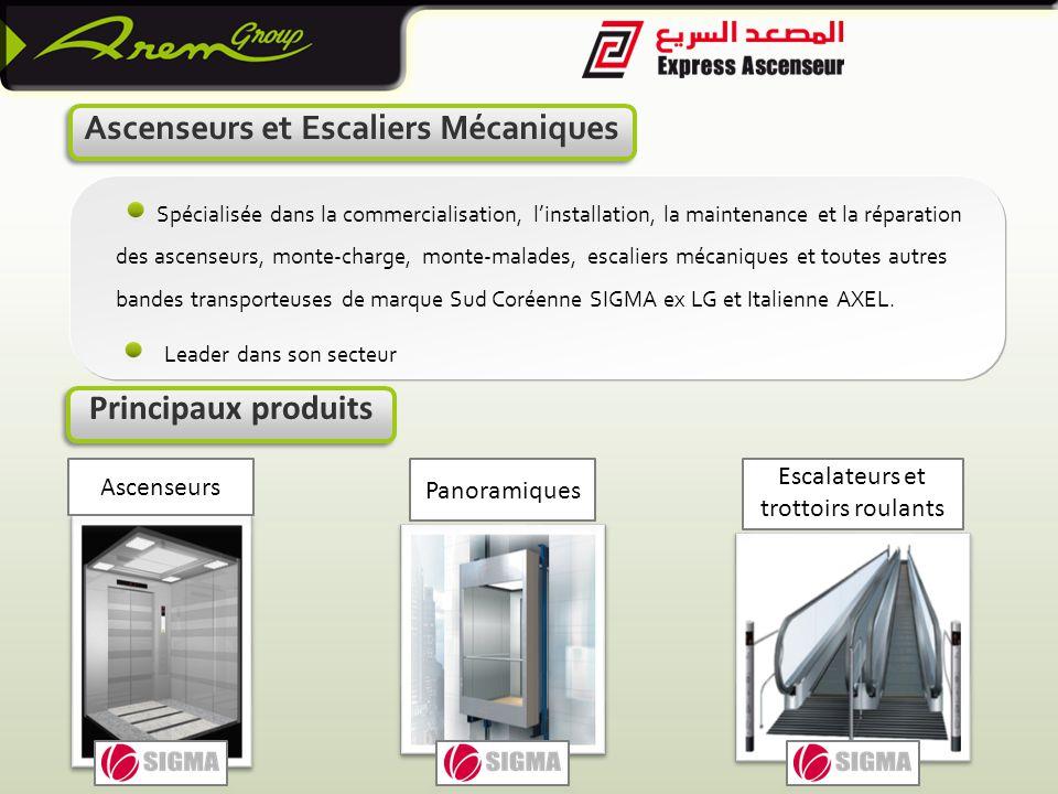 Spécialisée dans la commercialisation, l'installation, la maintenance et la réparation des ascenseurs, monte-charge, monte-malades, escaliers mécaniques et toutes autres bandes transporteuses de marque Sud Coréenne SIGMA ex LG et Italienne AXEL.