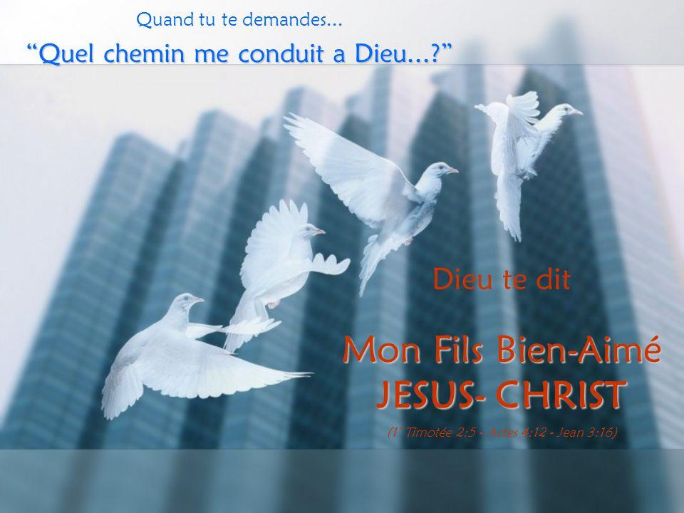 """Quand tu te demandes... """"Quel chemin me conduit a Dieu...?"""" Dieu te dit Mon Fils Bien-Aimé JESUS- CHRIST (1° Timotée 2:5 - Actes 4:12 - Jean 3:16)"""