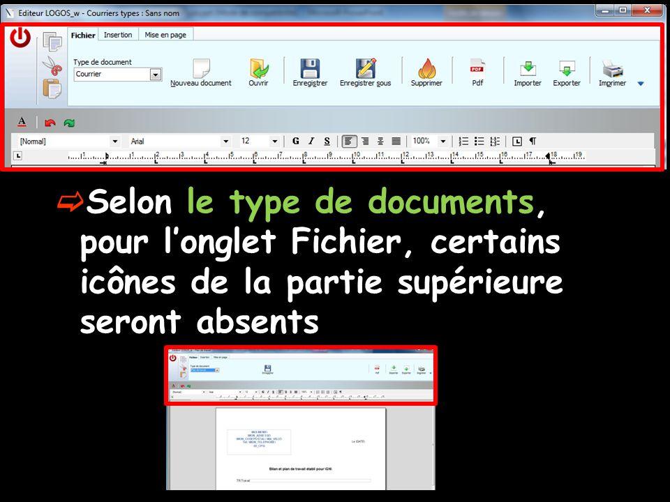  Selon le type de documents, pour l'onglet Fichier, certains icônes de la partie supérieure seront absents